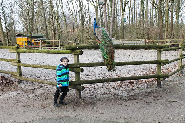 Brückenkopf-Park 4